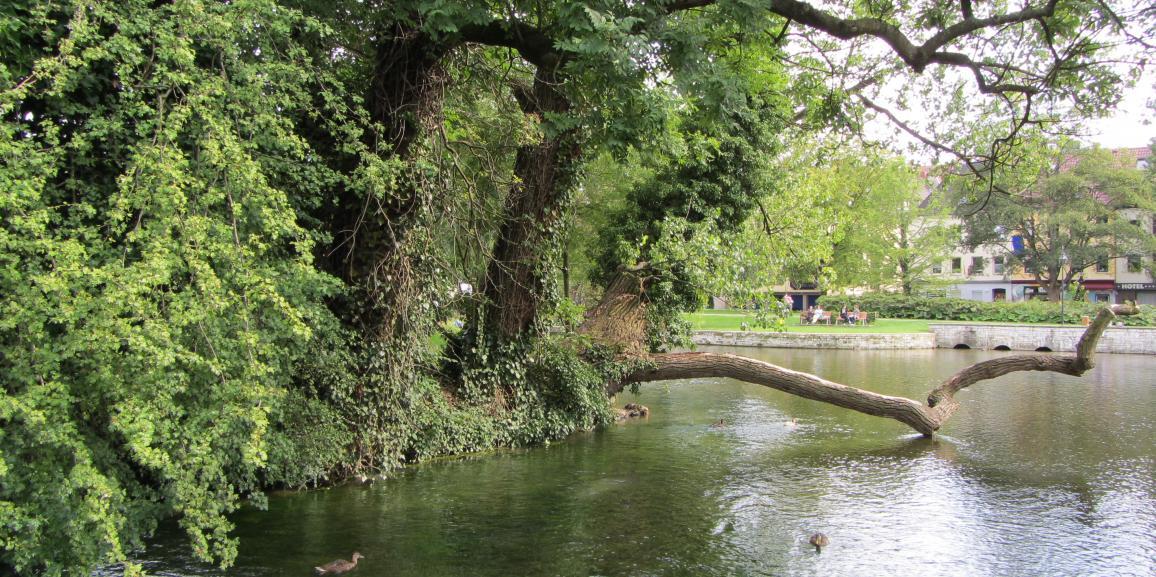 Wasserski – besondere Freizeitmöglichkeit in Paderborn