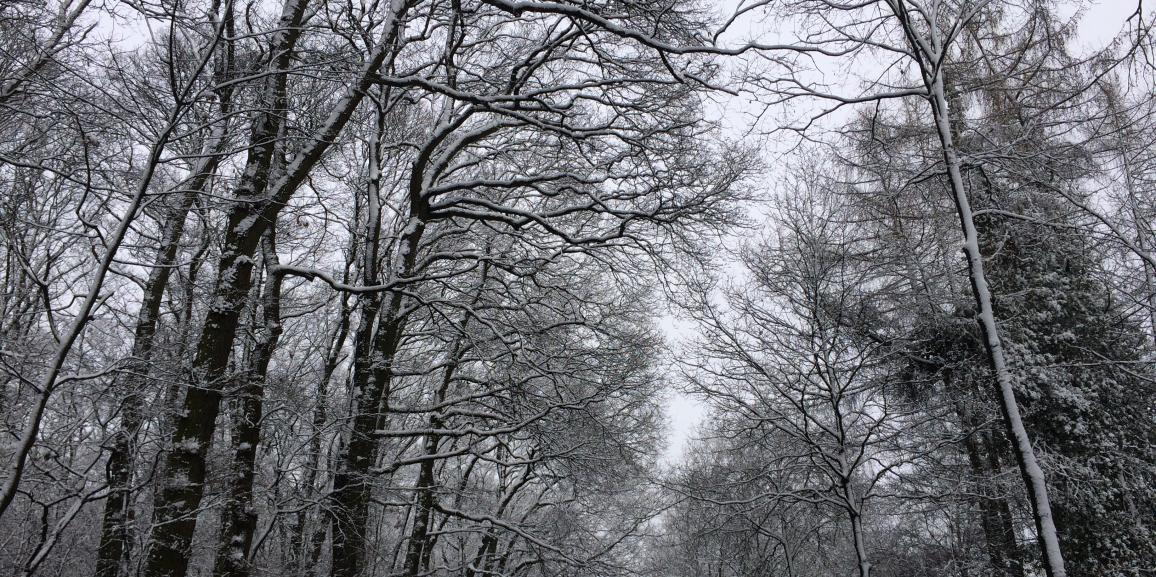 Winter in Lippstadt für Hotelgäste – Freizeitaktivitäten