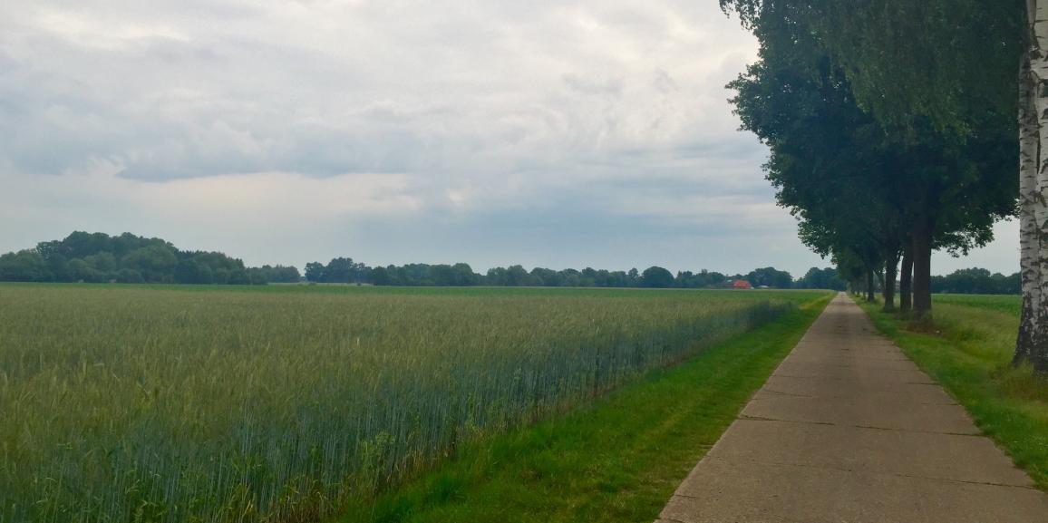 Segway Touren in Lippstadt und Umgebung