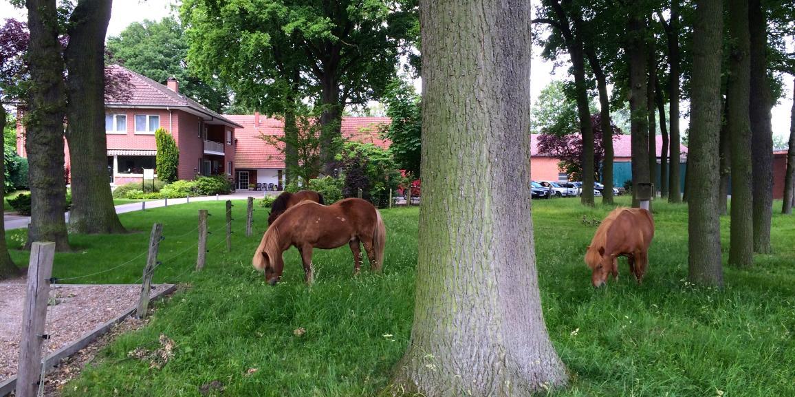 Ferien auf dem Bauernhof Lippstadt