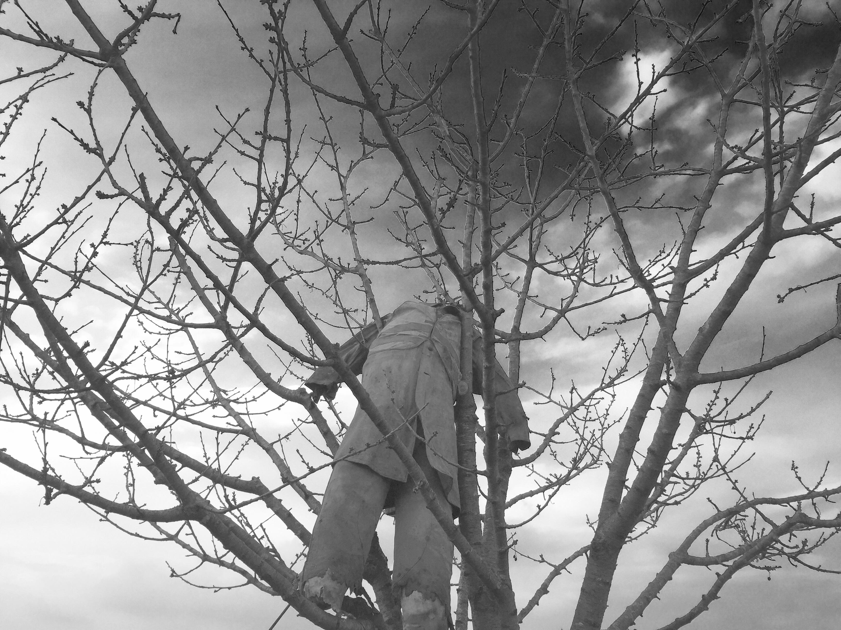 Figur in Baum 2