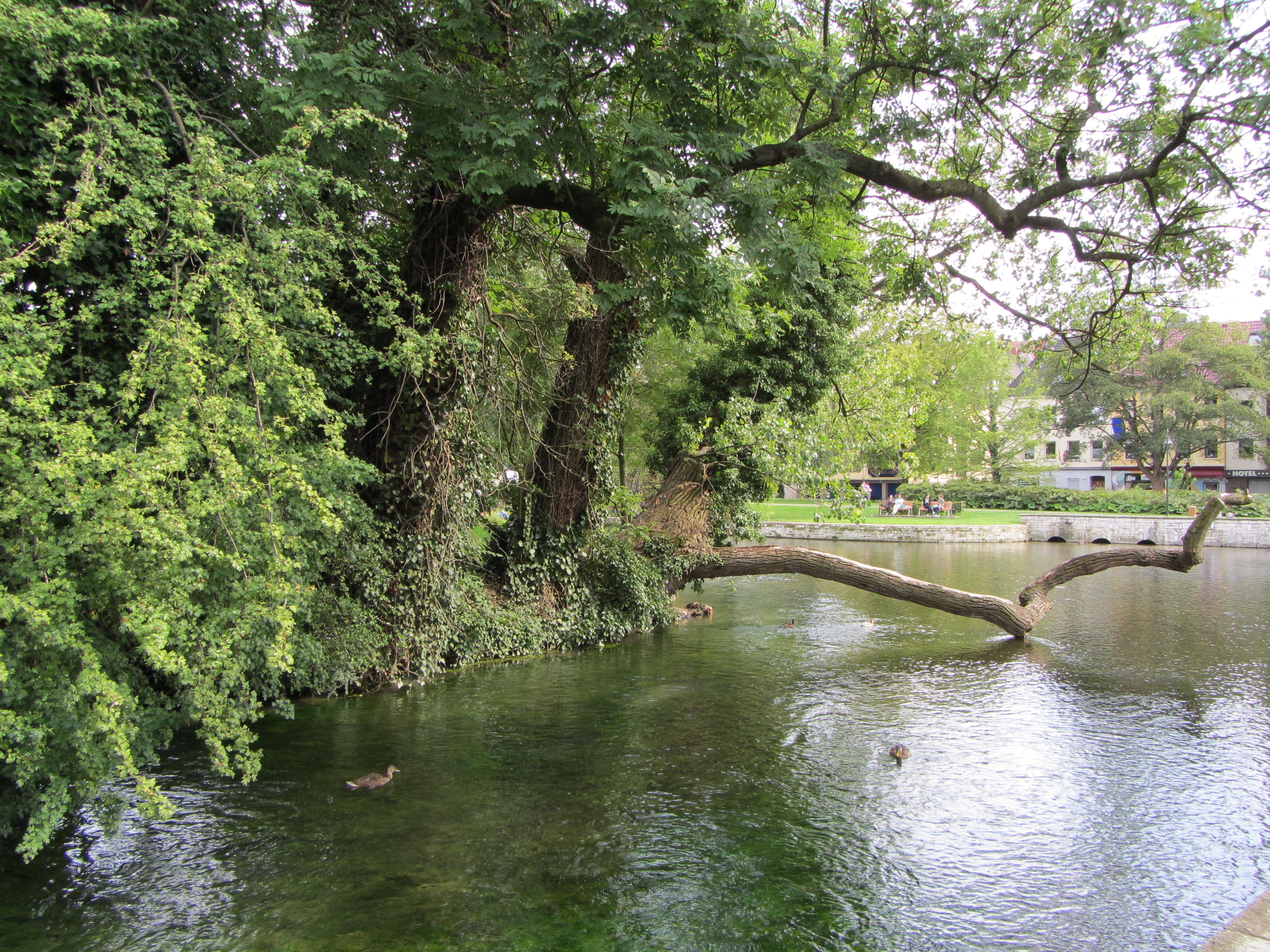 Wasserski fahren Paderborn Elsen - Tipp für Hotelgäste und Urlauber