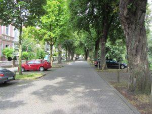 St. Martin - Am Martinsumzug sind die Straßen gefüllt